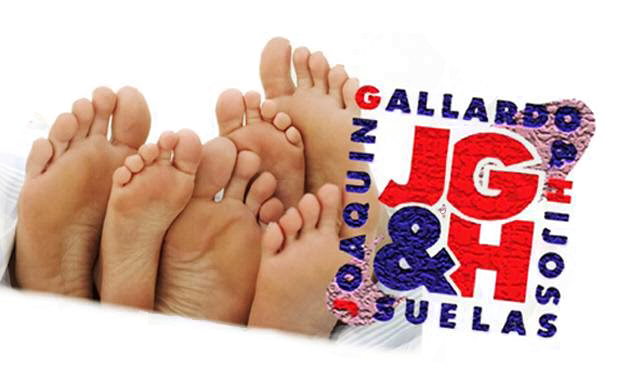Información de empresa Joaquín Gallardo e Hijos S.L.